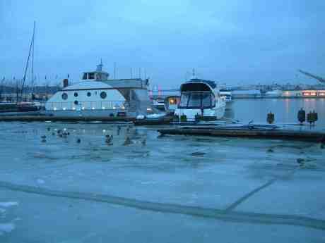 Änder i väntan på att sjunka genom isen. Lilla Bommens hamn söndag 16 december 2012 kl 15.34.