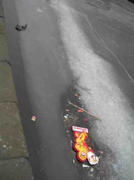 Kråka tycks försöka bärga död gräsansdhanne upp på isen genom ihärdigt dragande. Vallgraven vid Slussbron tisdag 19 februari 2013 kl 16.36.