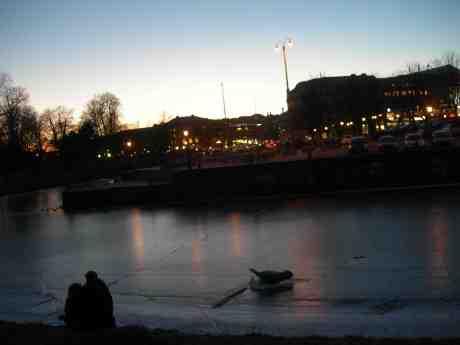 Svärmande par och konstgjord säl vid Vallgraven mellan Storan och Kungstorget. Fredag 1 mars 2013 kl 18.10.