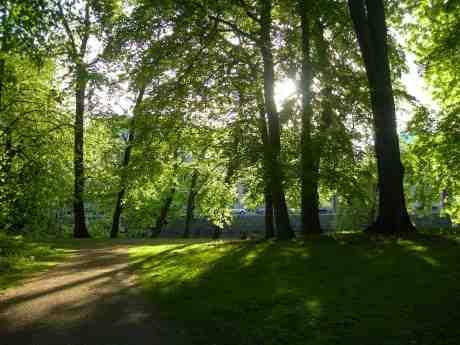 Picknick i allt det nygröna. Trädgårdsföreningen vid Vallgraven fredag 24 maj 2013 kl 19.43.