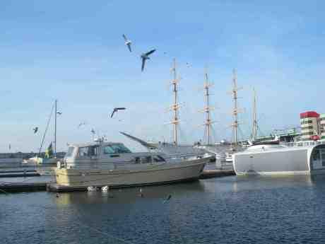 Svanar och andra flygfantomer matas i Lilla Bomens hamn. Påskafton lördag 30 mars 2013 kl 15.08.