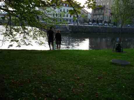 Andligt kärleksmöte i Trädgårdsföreningen. Nyfikna änder simmar i solglittret från Bastionsplatsen. Söndag 4 augusti 2103 kl 19.58.
