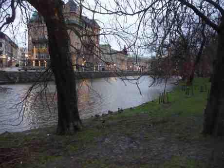 Julafton i Trädgårdsföreningen. Tisdag 24 december 2013 kl 14:40.