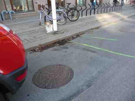 Lagd hund ligger. Östra Hamngatan fredag 11 oktober 2013 kl 14:42.