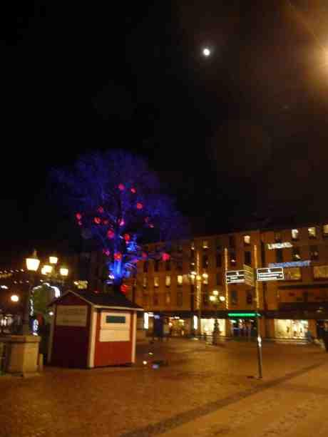 Månen lyser över Brunnsparken och Bräutigams stuga. Torsdag 19 december 2013 kl 23.59.