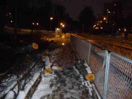 Stormens härjningar  i Biskopsgården intill Mildvädersgatans hållplats vid Höstvädersgatan. Söndag 8 december 2013 kl 16:20.