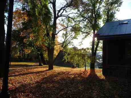 Vila och svärmeri bland höstlöven i Trädgårdsföreningen. Utsikt mot Stora Nygatan tisdag 15 oktober 2013 kl 16:13.