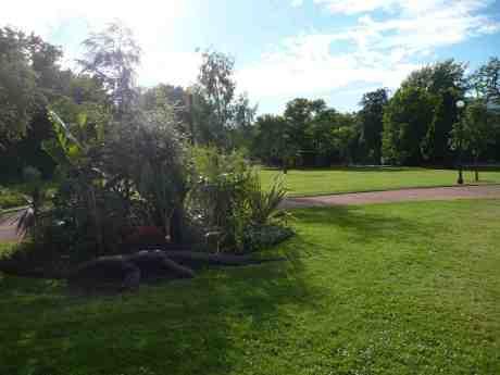 Krokodilen smyger i buskarna mätt och belåten med majstången i bakgrunden. Var är alla barnen? Trädgårdsföreningen midsommardagen lördag 21 juni 2014 kl 18:49.